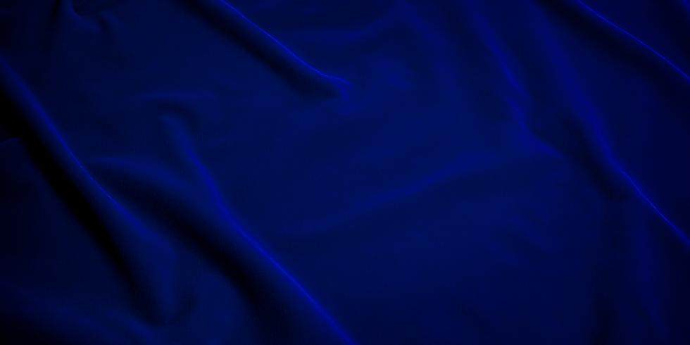 BLUE VELVET BANNER.png