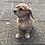 Thumbnail: Dog Name Tag