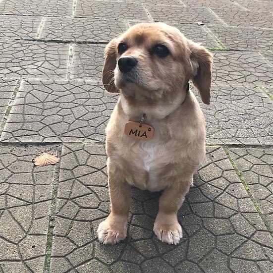 Dog Name Tag