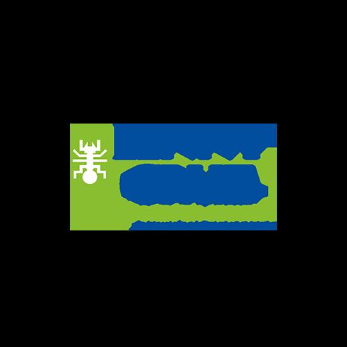 lenny-cruz.png