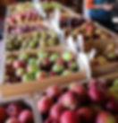 brattleboro scott farm apples