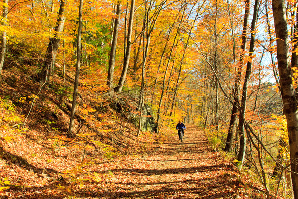 West River Trail.jpg