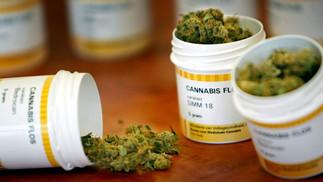 Diskusjon om effekten av de nye Cannabinoidmedikamentene