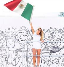 MEXICAN CONSULATE MIAMI