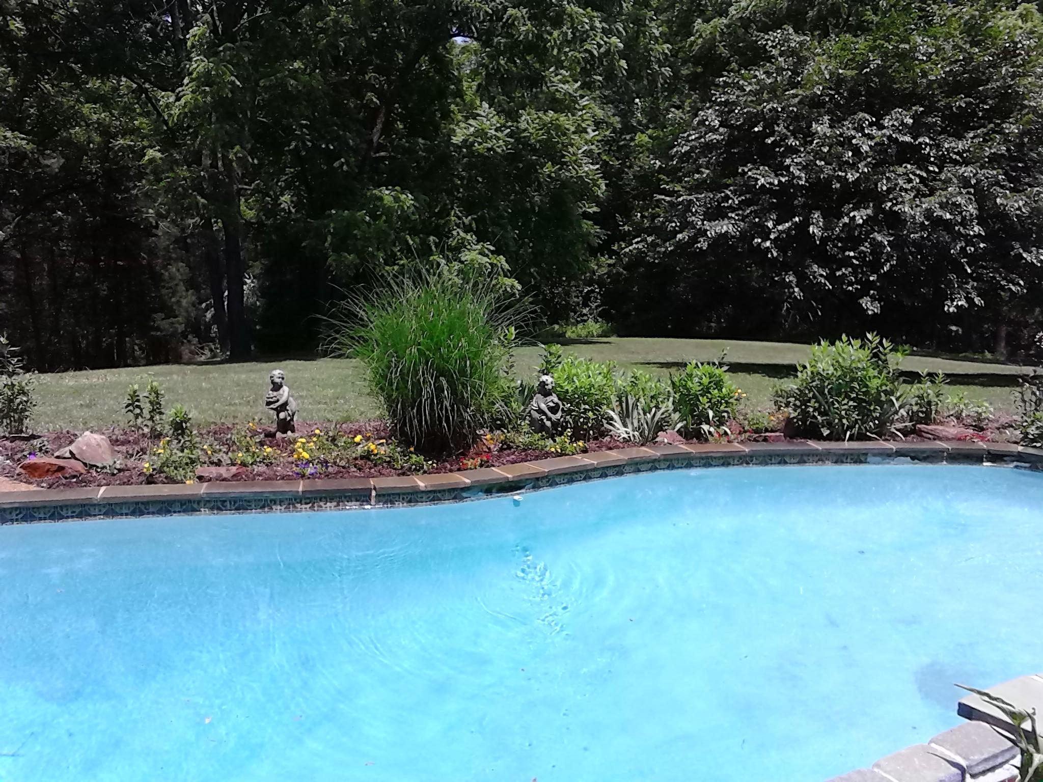 pool garden 2