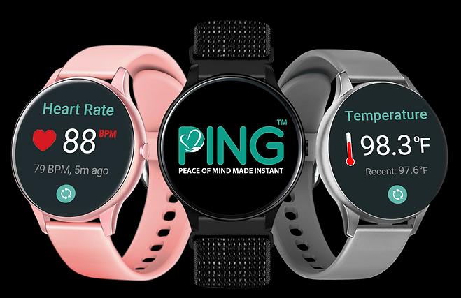 Introducing Ping_0821.png
