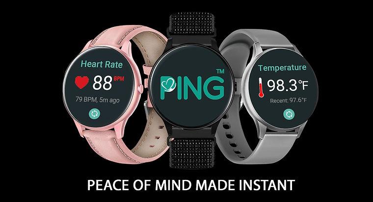 Introducing Ping.jpg