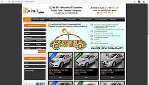 apercu-site-mobali-fr.jpg