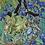 Thumbnail: Van Gogh Scarf