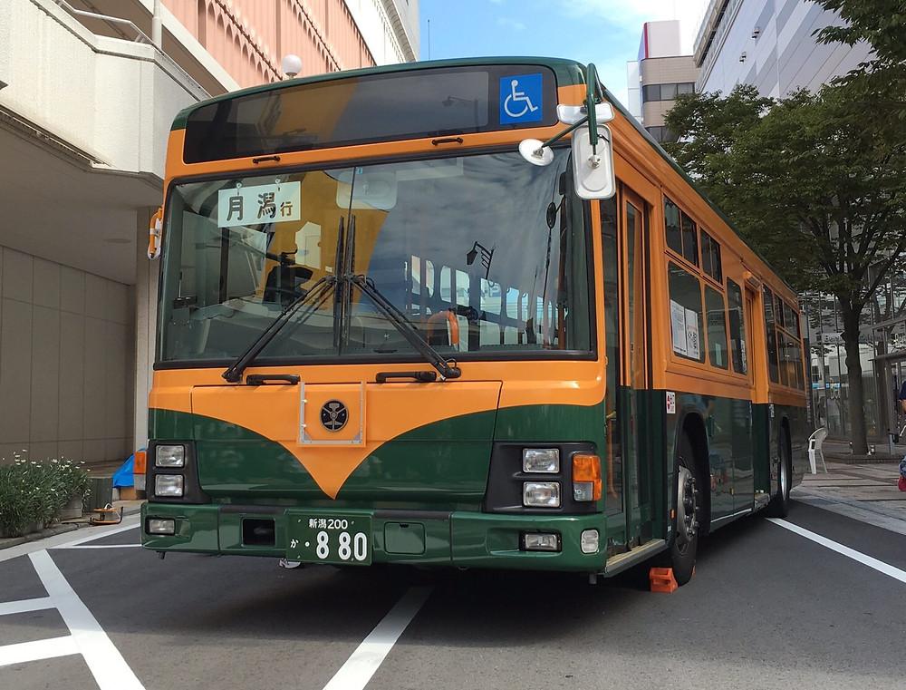 かぼでん柄の新潟交通バス♡