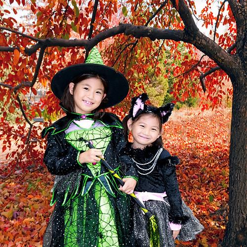Halloween Shigehisa