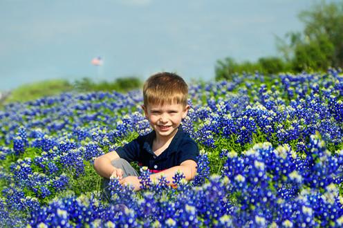 Texas Bluebonnets, Texas Bluebonnets Photographer, Texas Bluebonnets Photography