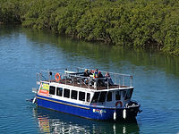 byron-bay-eco-cruises-kayaks-adventure-t