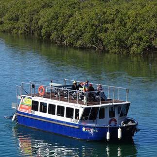 byron-bay-eco-cruises-kayaks-adventure-t