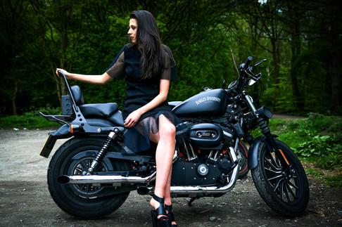 Harley Davidson Portrait.jpg