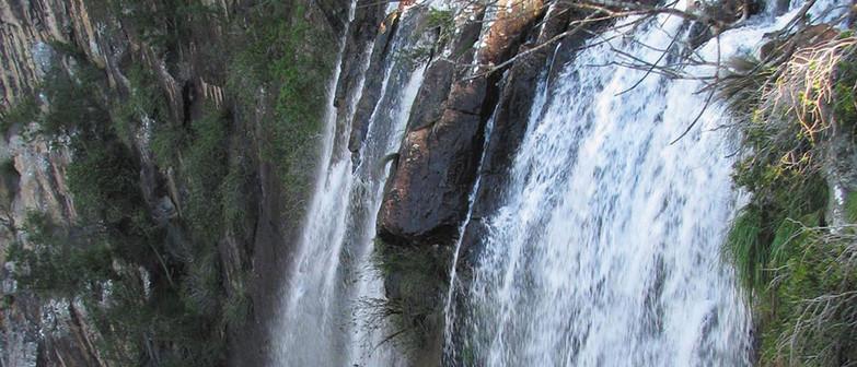 Minyon-Falls-waterfall-tour.jpg
