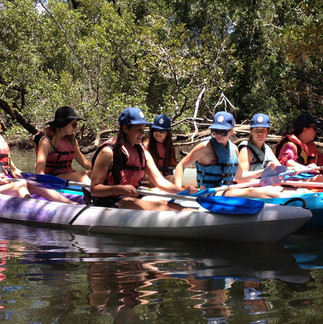 Eco-Guided-Kayaking-SUP-Tours (1).jpg