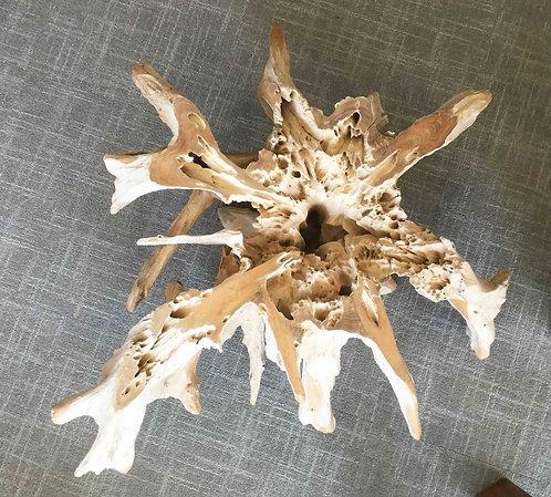 CTR054 , Driftwood Coffee Table , Teak root .