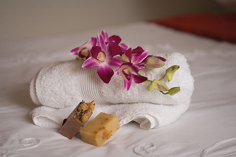 A bath sheet and hand towel with tolieties will be left for each guest booked.