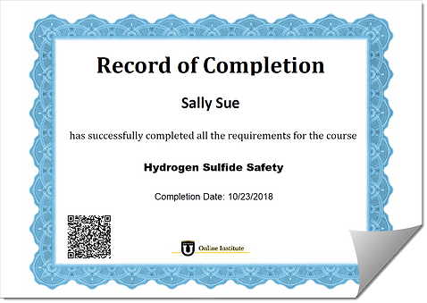 Training Certificate Example.png