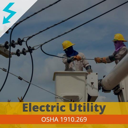 Electric Utility