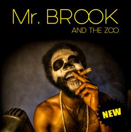 Mr BROOK and The Zoo ❘ reggae soul
