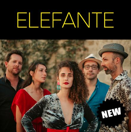 ELEFANTE ❘ brazilian music
