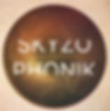 SKYZO_visuel artistes.png
