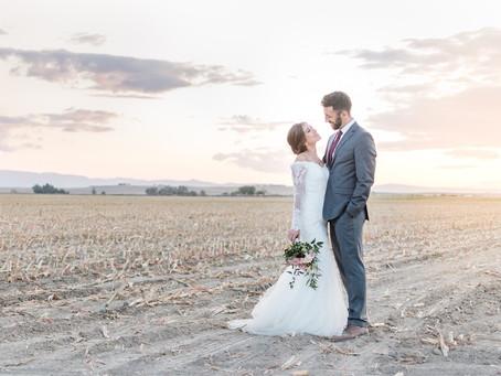 Sunflower Lane Wedding