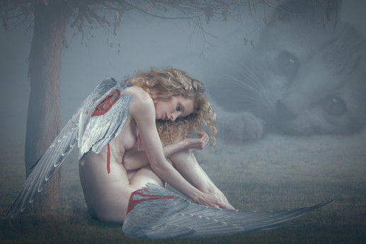 'broken angel' by Gerald Gribbon - Accepted