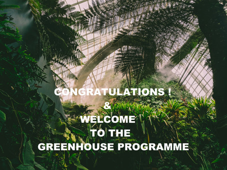 Olwg Wins a Place on The Greenhouse Innovation Programme