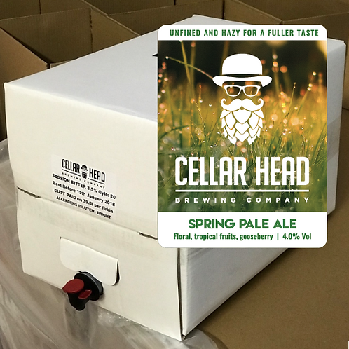 10L Beer in a Box Spring Pale Ale
