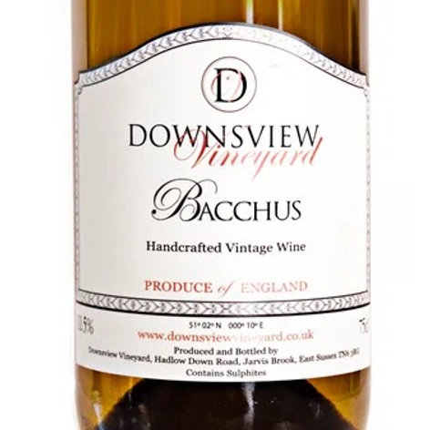 Downsview 2019 Bacchus White Wine