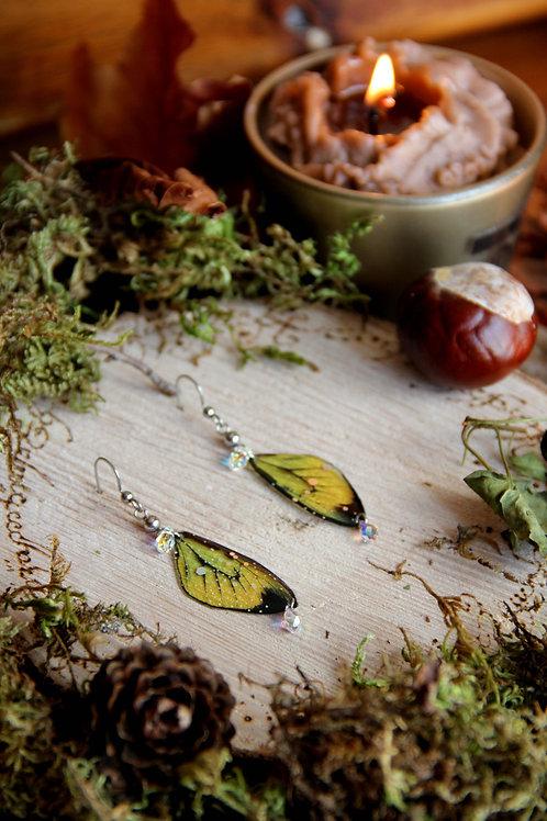 """Boucles """"Papillons aux cristaux"""""""