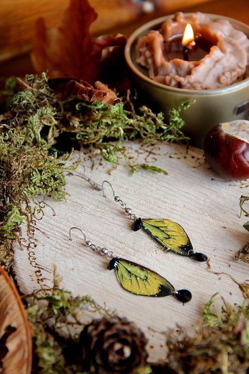 """Boucles """"Papillons aux cristaux"""" (noir)"""