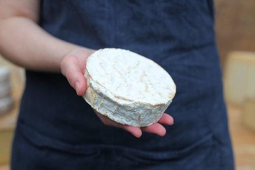 CHEESE Camembert de Normandie