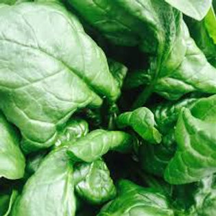 Spinach - FLOURISH PRODUCE