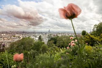 Copyright © 2020Julie Bruhier Photographe / Bordeaux