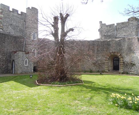 Lewes-Pic-6.jpg