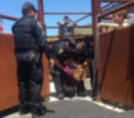 Zoe Rosenberg (being arrested at Cal Pol