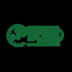 BackTrackVideo