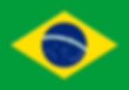 Flag_of_Brazil.svg_1.png