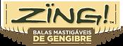 LOGO-ZING.png