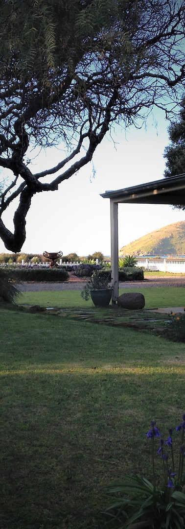 View towards The Bluff looking across the front garden.   The photo was taken from the veranda of the cottage.