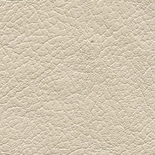Birch Ivory
