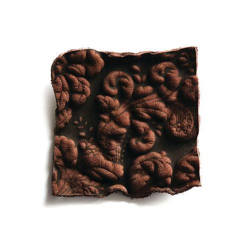Squash Brownie