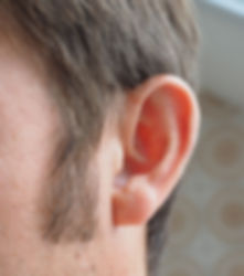 Close up of ma's ear