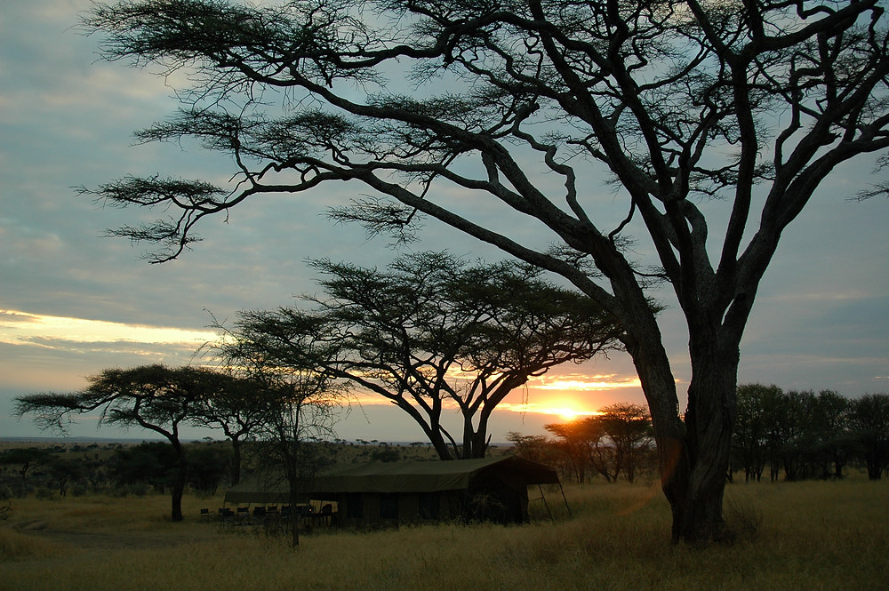 Southern_Africa_DSC_0164.jpg