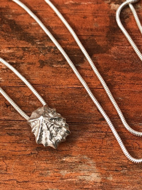 Silver Limpet Necklace