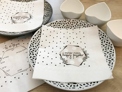 paper napkins/ happy passover